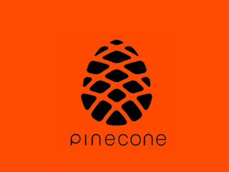 Procesador Pinecone de Xiaomi